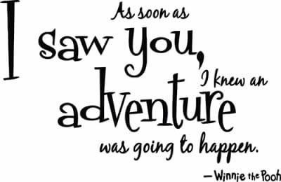 vinilo-adventure