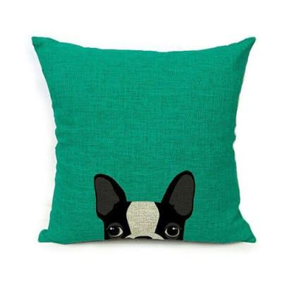 perrito-solo-verde