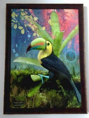 cuadro tucan