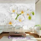 Foto mural orquidea blanca