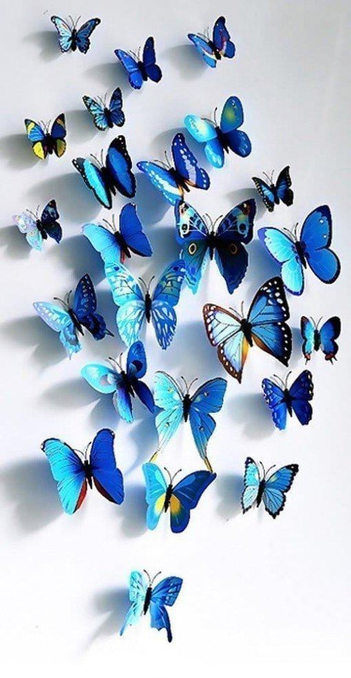 Set de mariposas decorativas