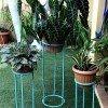 pedestal celeste tres plantas decoración para jardín
