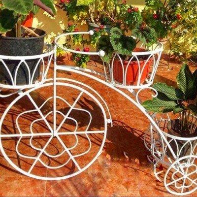 triciclo tres plantas