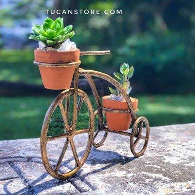 triciclo dorado cactus decoración para jardín