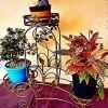 estante para plantas modelo Armonia decoración para jardín